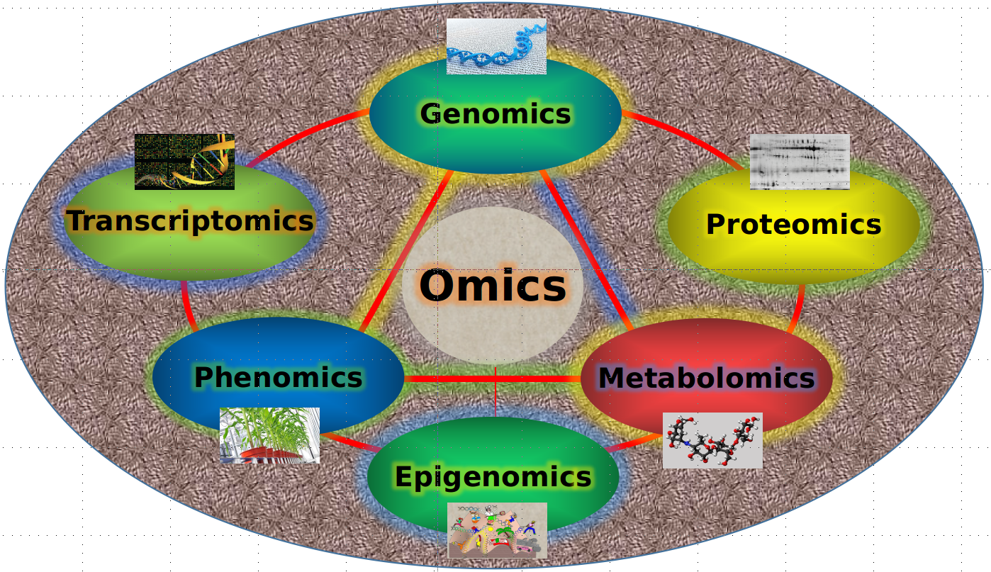 Figure 1. Omics Knowledge Portal for Rice