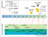 IC4R-Genome-overview-1.png